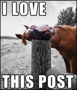 Love_This_Post_meme